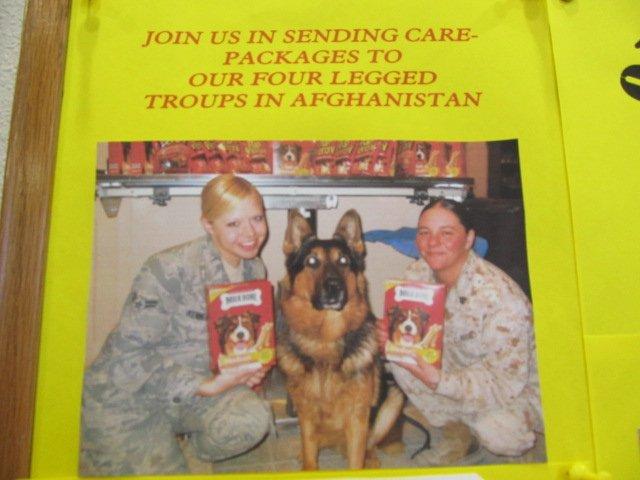 Alexandra Kennedy (USAF) Ashley Moore (USMC) Founders of Operation Kennel Mom, INC.